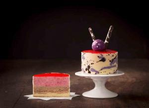 Raspberry Rum Mousse Cake-1
